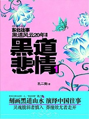 黑道风云20年前传:黑道悲情1有声小说
